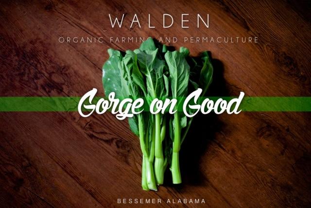 Walden Farms Graphic Design